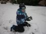 Berušky na sněhu