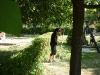 brigada_na_skolni_zahrade100