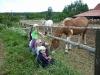skolka_v_prirode_2012115