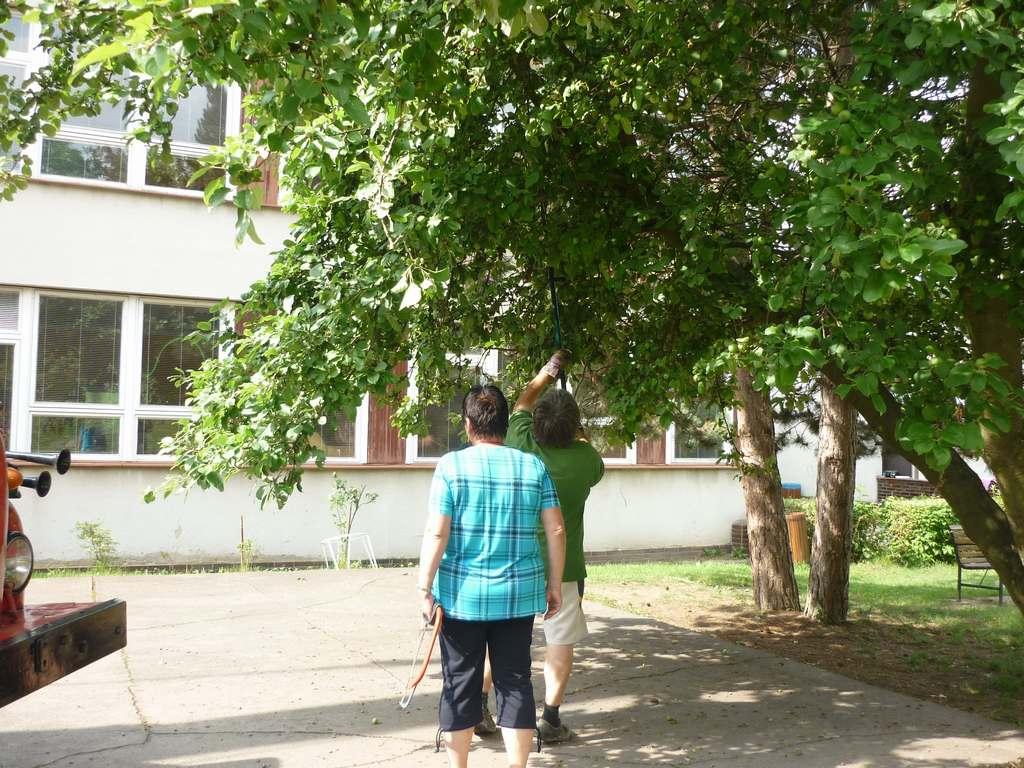 rekonstrukce_2-_pavilonu_ms_prazska_doksy_2012111