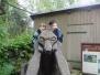 Zajíčci adoptovali vlka